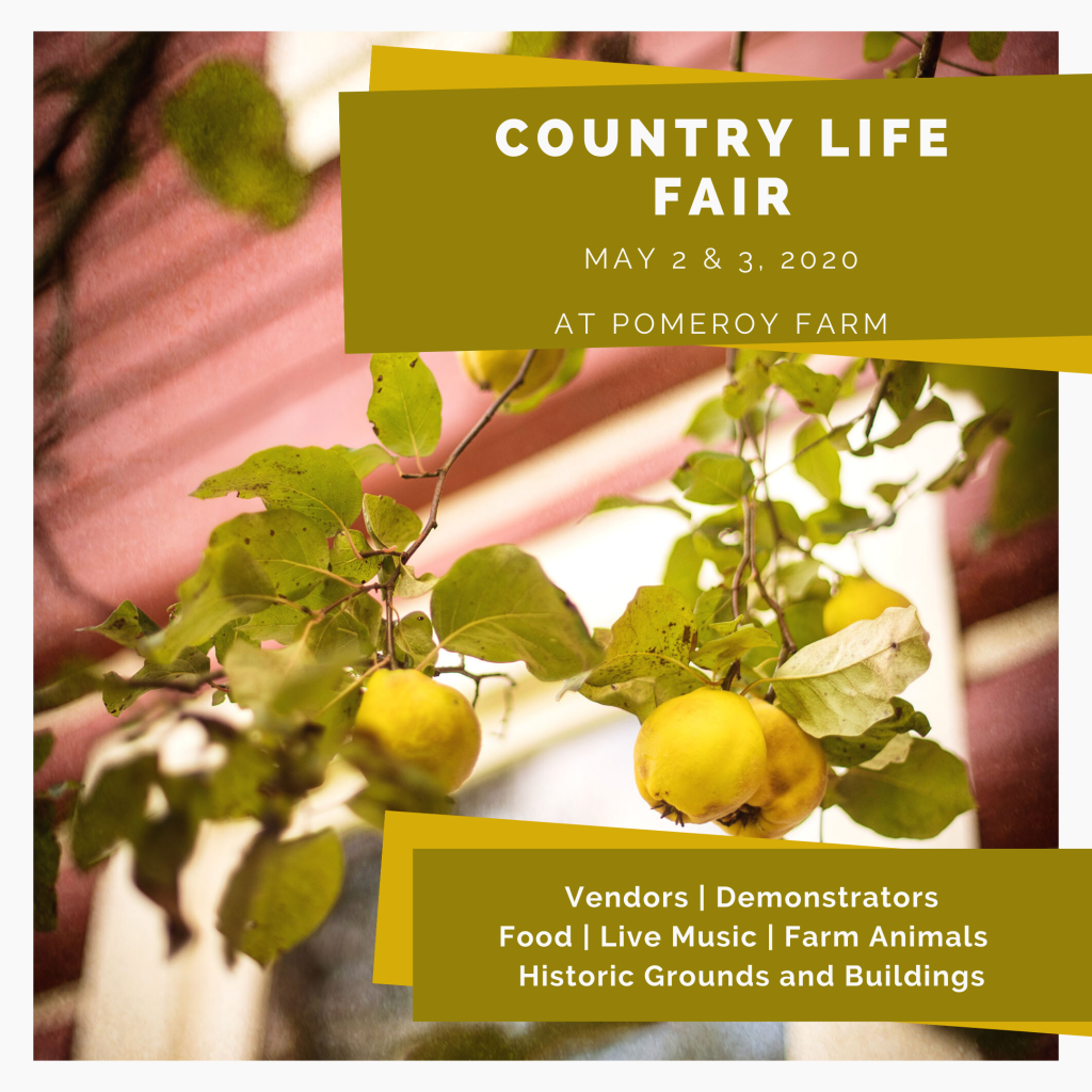 Country Life Fair 2020